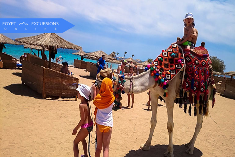 Camel Riding Safari Trip in Sharm